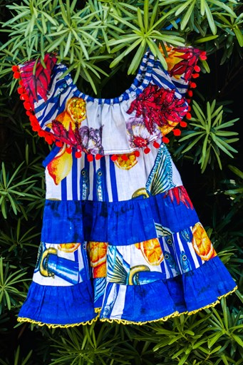 Zadana Girl's Dress